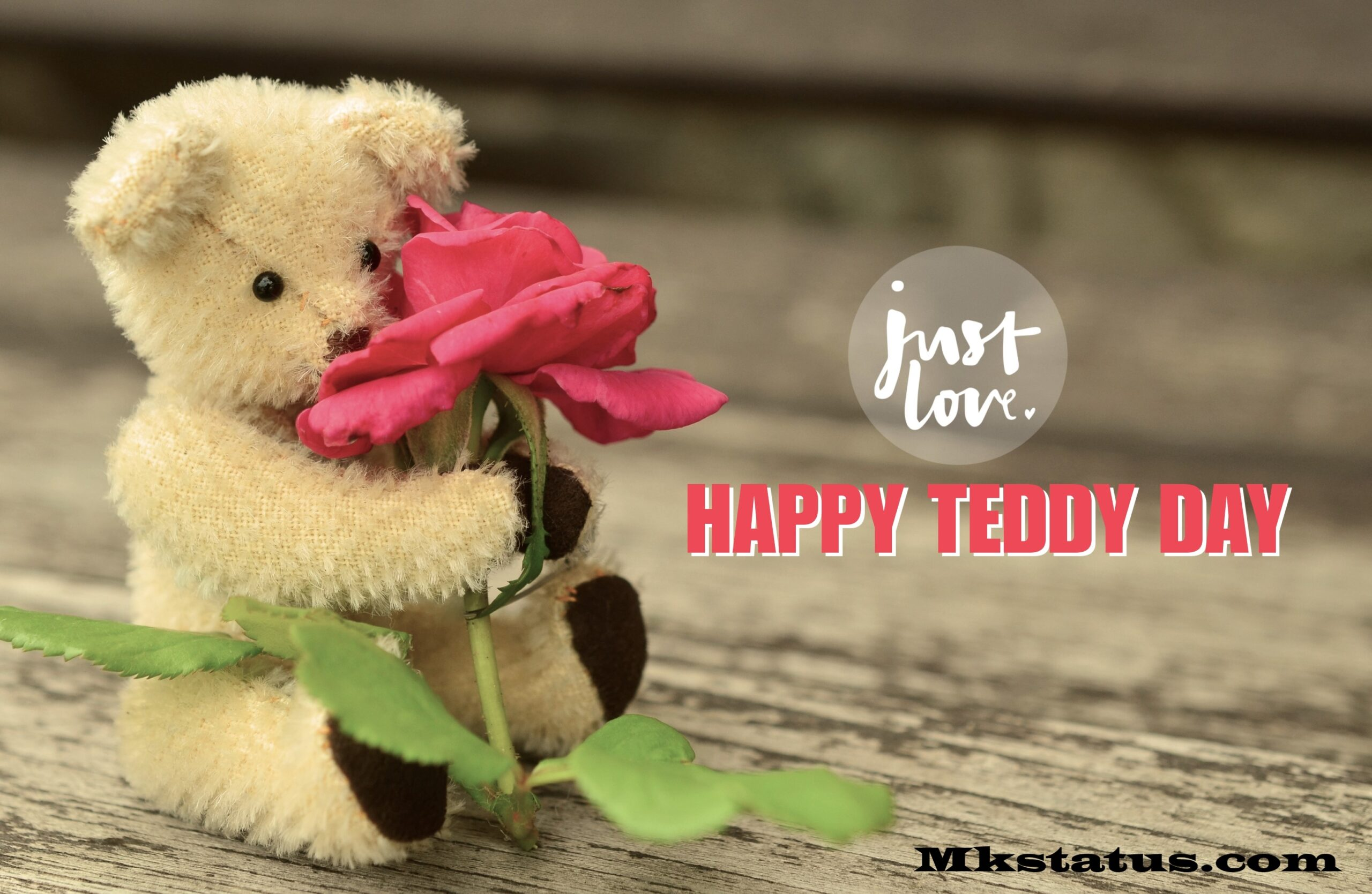 Beautiful Happy Teddy Day Wishing quotes images