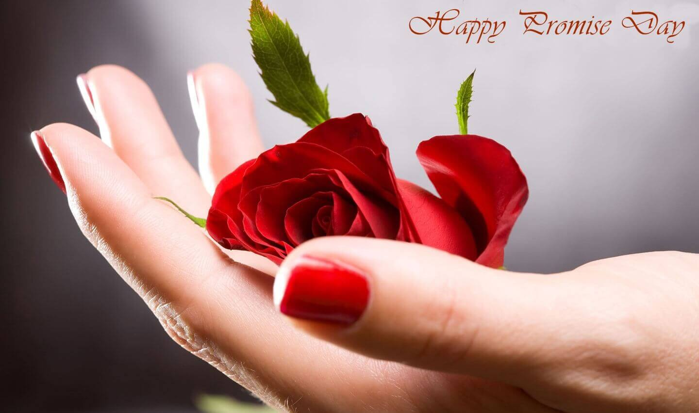 Lovely Happy Promise Day Wishing red rose images