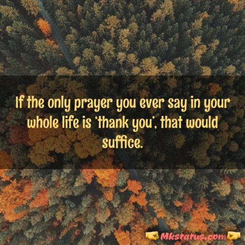 Thank you Quotes for Status