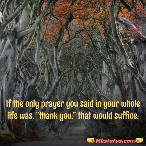Thank you Quotes for Status images 2020