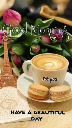 Good Morning Rose and Tea cup images