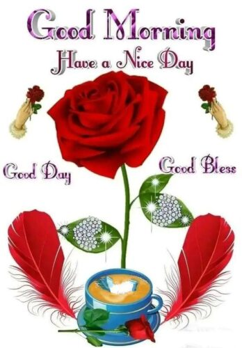 Download Good Morning wishes rose images