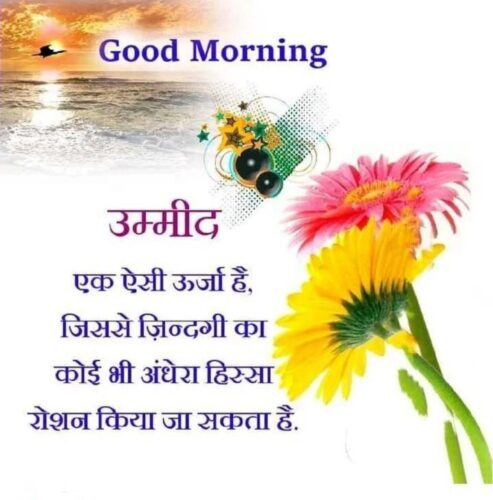 Latest 2020 Good Morning Photos with Quotes in Hindi
