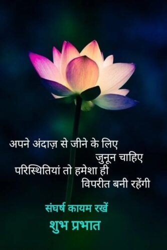 Happy Good Morning Quotes pics in hindi with flowers background