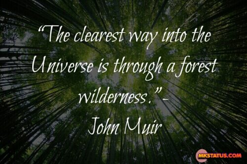 Earth Day Quotes Images