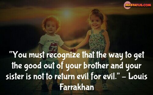 Real Sister and Brother Quotes