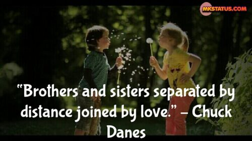 Real Sister and Brother Quotes in English
