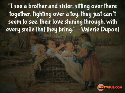 Brother and Sister Love Quotes In English