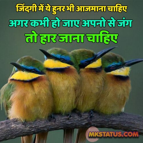 Reality Quotes of life images