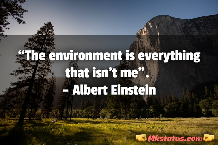 World Environment Day Quotes images in english