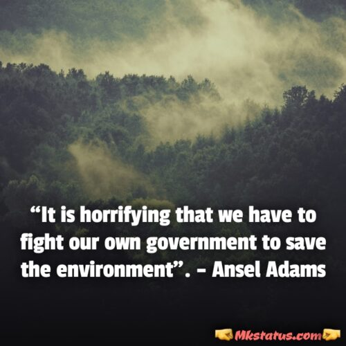 World Environment Day Slogan and Quotes for free downloads
