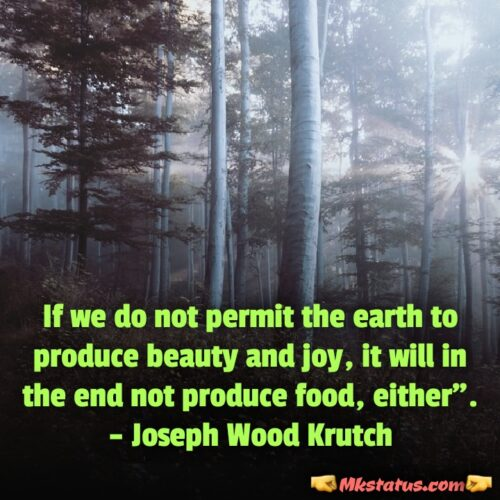 world environment day wishes quotes for whatsapp status and Dp