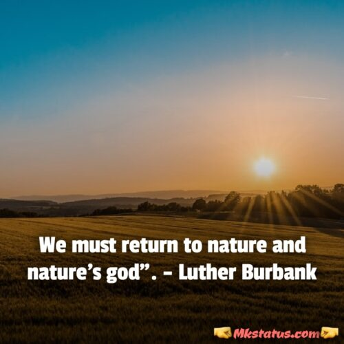 World Environment Day 2020 wishes quotes images