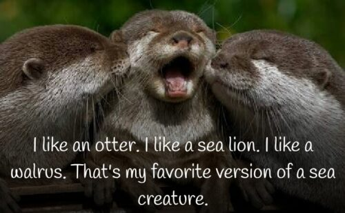 World Otter Day Quotes