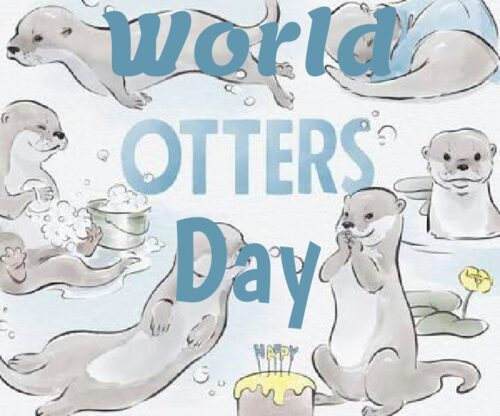 World Otter Day Wishes