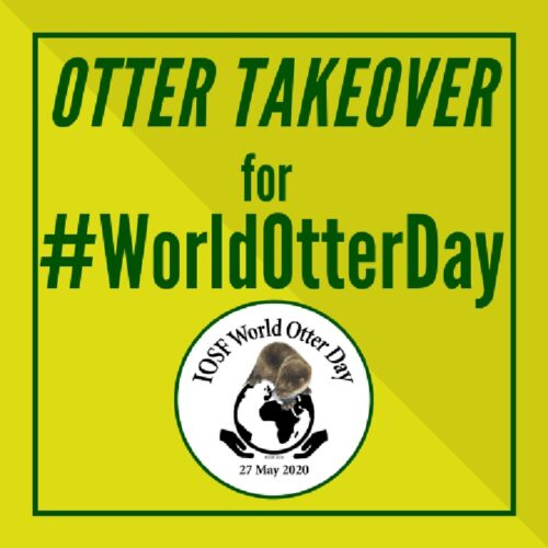 World Otter Day 2020 Theme Images