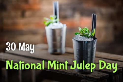 Happy National Mint Julep Day 2020 pics
