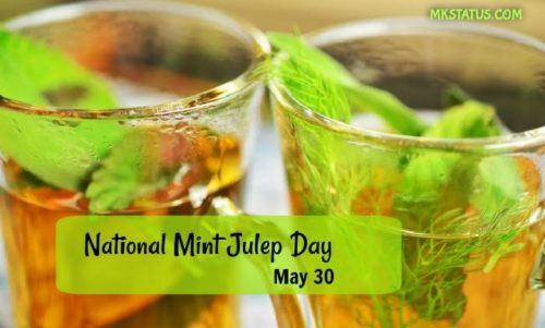 Mint Julep Day 2020 wishes images