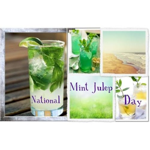 30 May Happy National Mint Julep Day images