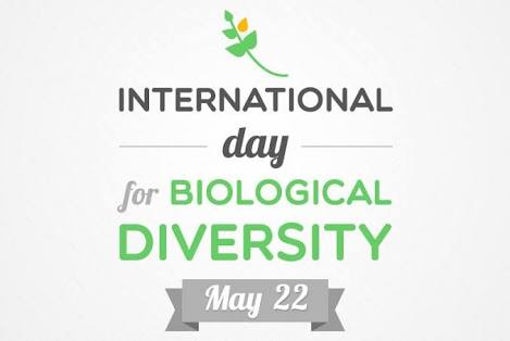 International Day for Biological Diversity Status