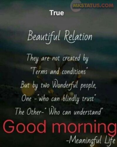 Beautiful Relationship Good Morning Messages images