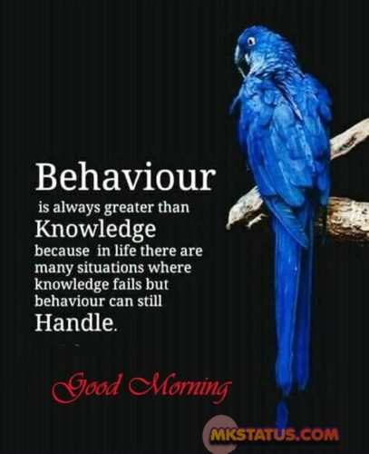 Latest Good Morning messages in English Images