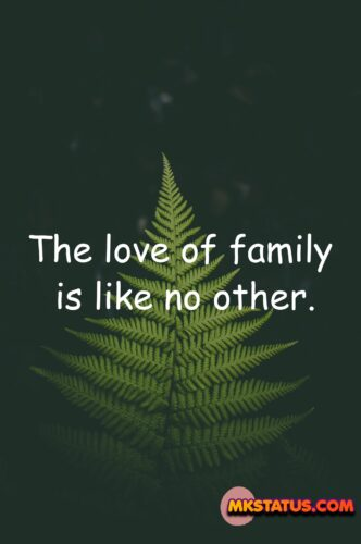 Best new International Day of Families 2020 Quotes and messages images