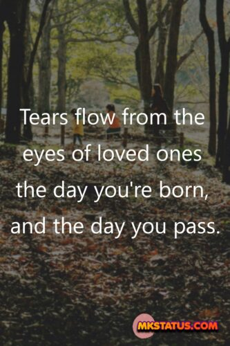 Popular Family quotes images