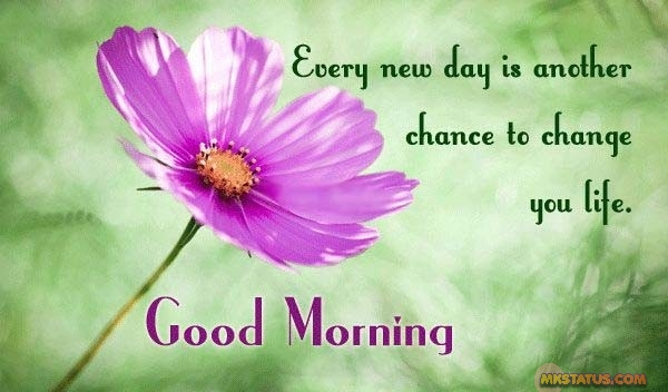 Best New Good Morning Life Quotes images