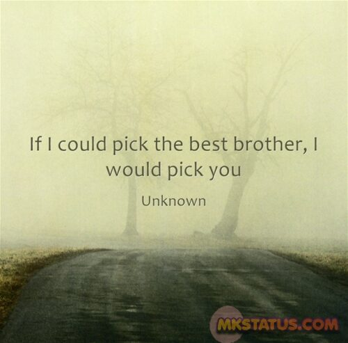 Brother's Day messages images in English