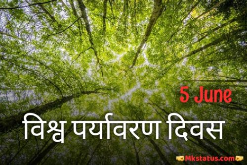 World Environment Day 2020 pictures