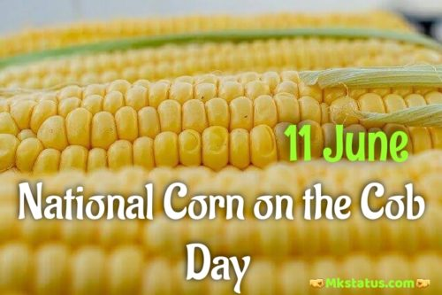 11 June National Corn on the Cob Day 2020 wishes images