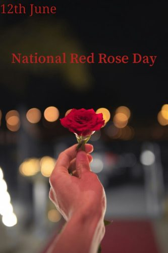 National Red Rose Day 2020 images for Instagram Status and DP