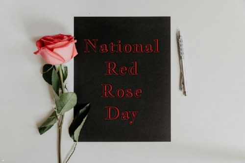 National Red Rose Day 2020 wishes images