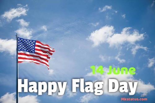 Happy Flag Day Photos for status