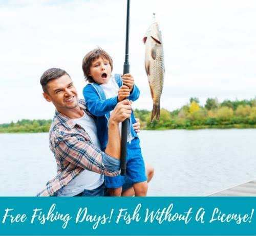 Happy National Go Fishing Day 2020 images