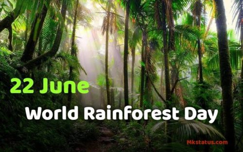 Download World Rainforest Day 2020 images