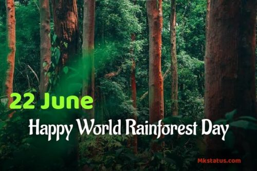World Rainforest Day 2020 images for status & DP