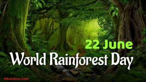 World Rainforest Day 2020 images