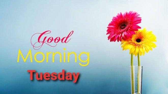 Happy Good morning Tuesday Quotes