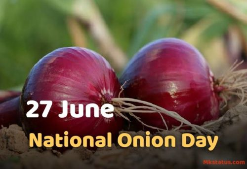 27 June National Onion Day images