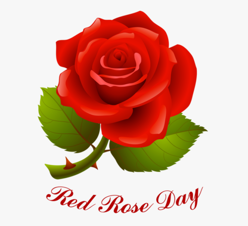 Beautiful images of National Red Rose Day