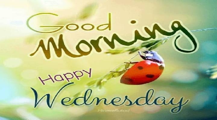 Good Morning Wednesday Wishes Images