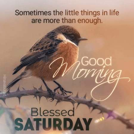 Download Good Morning Saturday Blessing Messages images