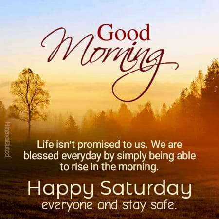 Happy Saturday Good Morning Quotes & messages Images