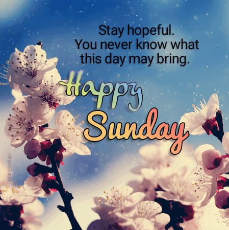 Download Good Morning Sunday wishes Quotes images