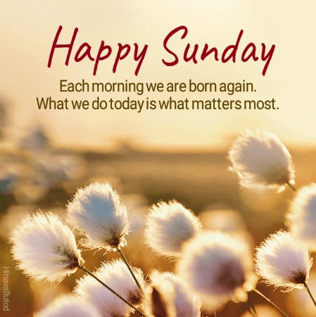 Happy Sunday wishes Quotes and Messages images