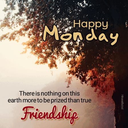 Happy Good morning Monday Quotes images