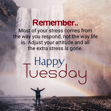 Download Happy Good morning Tuesday Quotes Images