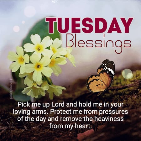 Good morning Tuesday Blessing Quotes Images